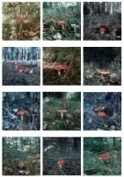 http://carolinanitsch.dreamhosters.com/files/gimgs/th-118_118_hoeller-carsten-mushrooms.jpg
