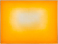 http://carolinanitsch.dreamhosters.com/files/gimgs/th-28_KAP-0044-Yellow-Rising-04-LoRes.jpg