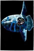 http://carolinanitsch.dreamhosters.com/files/gimgs/th-291_ROC-0011-Untitled-Mola-Mola_v2.jpg