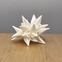 http://carolinanitsch.dreamhosters.com/files/gimgs/th-324_Stell-Star-6-crop-lr.jpg