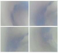http://carolinanitsch.dreamhosters.com/files/gimgs/th-34_NIC-0094-Bumerang-no97-100_LoRes.jpg