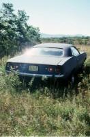 http://carolinanitsch.dreamhosters.com/files/gimgs/th-37_37_w75-prince-whitney75-final.jpg